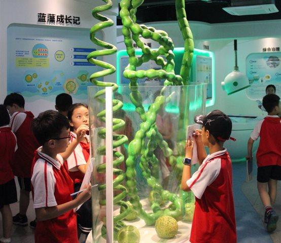 合肥光华学校:学环保知识,做绿色卫士 - 合肥光华学校招生平台 -