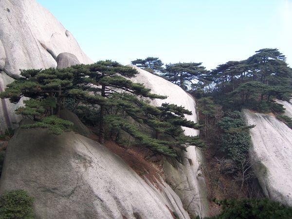 风景名胜区,国家aaaa级旅游区,全国文明森林公园,中华十大名山等称号.